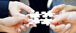 Organizational will helps put all the puzzle pieces together