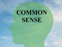 Common Sense AI – A New Initiative from the Allan Institute for Artificial Intelligence