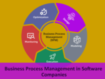 Business Process Management in Software Companies