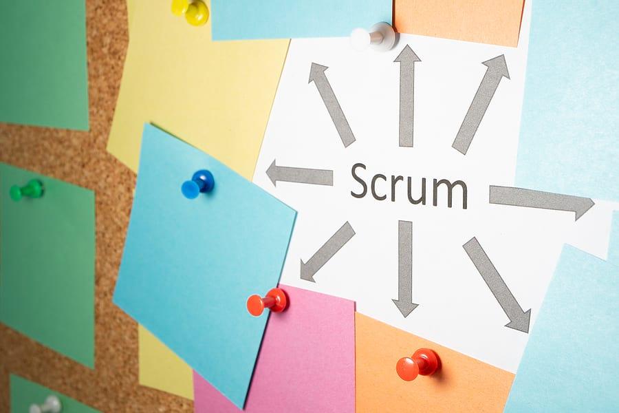 agile scrum roles